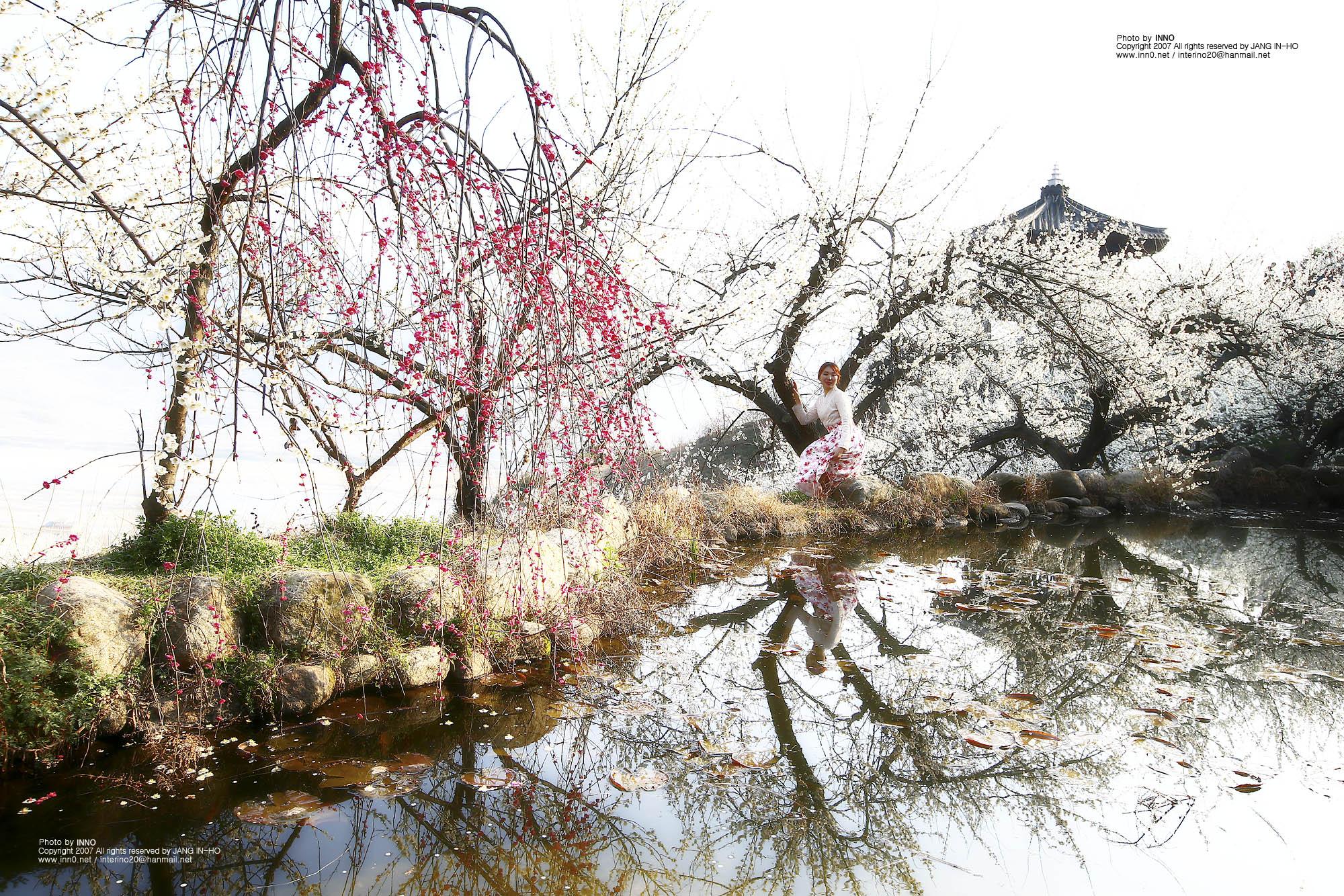 연못6.jpg